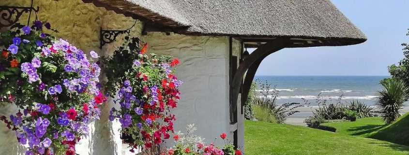 Bettystown cottage