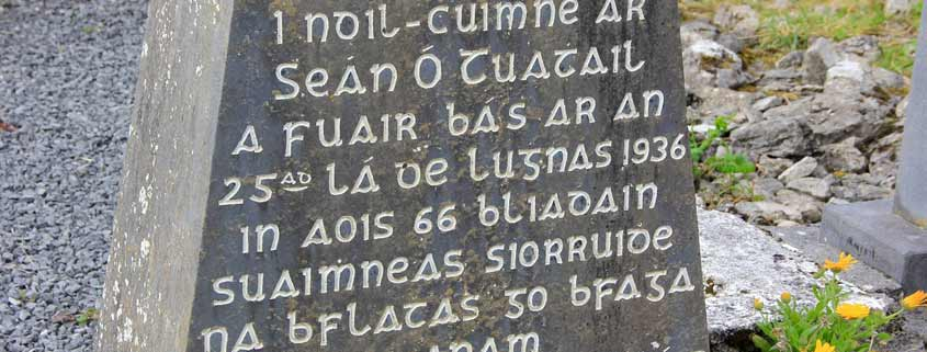 lingua irlandese, gaelico zone Gaeltacht