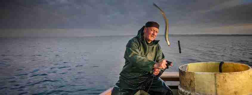 Pescare nel Lough Neagh