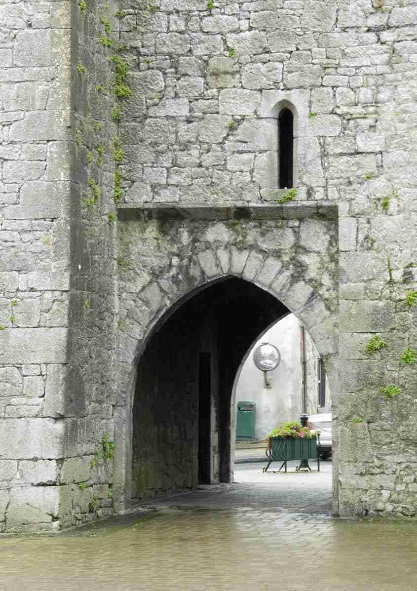 King Johns Castle, Kilmallock
